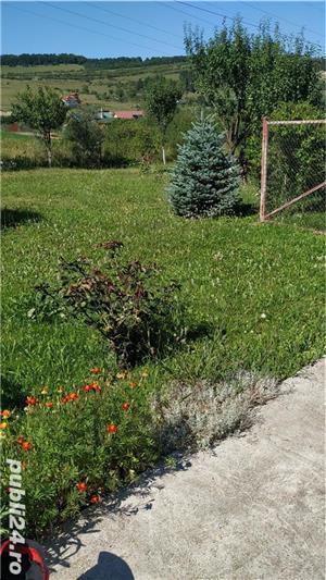 Vand casa, anexe si 1889 mp teren extravilan Floresti - imagine 9
