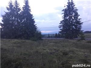 Teren in zona Beli ului ptr. Cabană, pensiune, etc. la 5 km de lac  ipârtia - imagine 4
