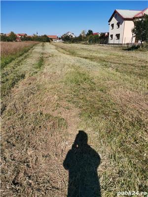 La 3 min de Timisoara 2731 mp cu 2 ieșiri în Giarmata Vii - imagine 5