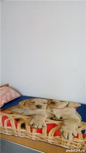 Apartament 2 camere, mobilat, Decebal - imagine 6