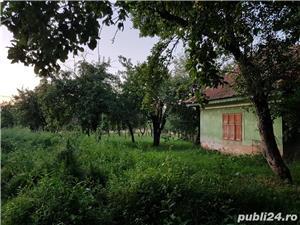 Gospodarie la tara - 2 case cu gradina si livada - Vad - Fagaras - imagine 4