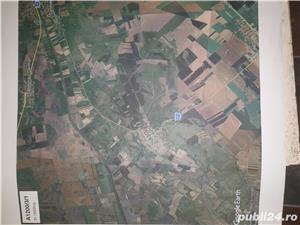 Teren agricol 19300 m2 Sanmihaiu Roman ,12500 euro, persoana fizica - imagine 3