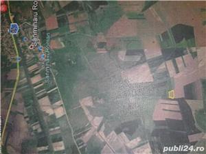 Teren agricol 19300 m2 Sanmihaiu Roman ,12500 euro, persoana fizica - imagine 4