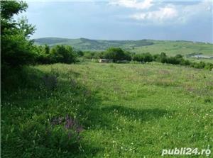 Teren 1900mp sat Todirel, Barnova - imagine 3