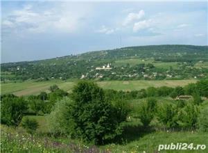 Teren 1900mp sat Todirel, Barnova - imagine 1