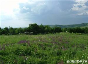 Teren 1900mp sat Todirel, Barnova - imagine 4