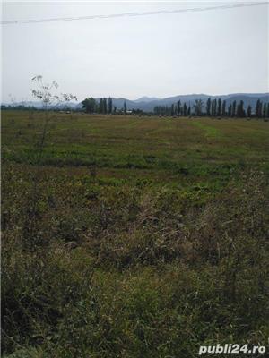 50000 mp Aeroport Ghimbav - imagine 2