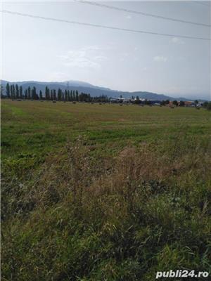 50000 mp Aeroport Ghimbav - imagine 4