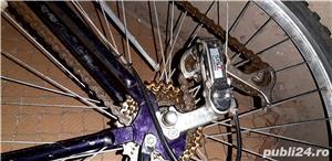 Vand bicicleta California - imagine 3