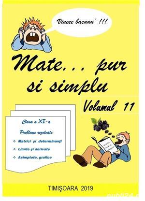 MATEMATICA  REZOLVATA  PAS CU PAS  Mate … pur si simplu. Autor Liana Iliescu - imagine 9