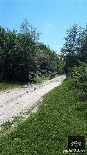 Vand teren si padure conifere in Albestii de Muscel. - imagine 10
