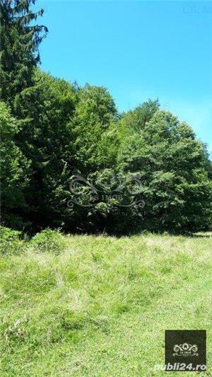 Vand teren si padure conifere in Albestii de Muscel. - imagine 6