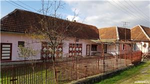 Vand casa in sat Risculita, com. Baia de Cris, jud. Hunedoara - imagine 3