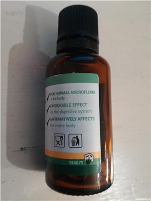 CLEAN FORTE Deparazitant natural - 90 lei/ 30 ml - imagine 4