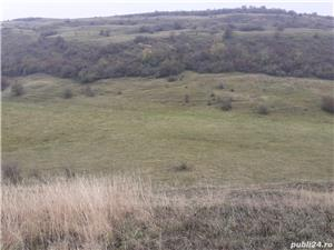 Vand teren agricol 20 hectare comuna Mociu jud. Cluj - imagine 3