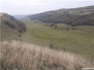 Vand teren agricol 20 hectare comuna Mociu jud. Cluj - imagine 4