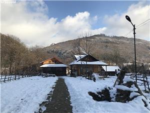 Oferta Inchiriere !!!cabana la munte Valea Doftanei - imagine 19
