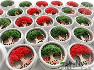 Martisoare brosa copacul vietii licheni stabilizati - imagine 3