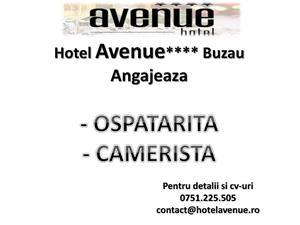 Hotel Avenue Buzau Angajeaza - imagine 1