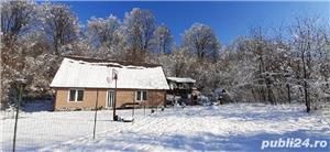 Inchiriez cabana Valea Avrigilui - imagine 8