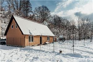 Inchiriez cabana Valea Avrigilui - imagine 9