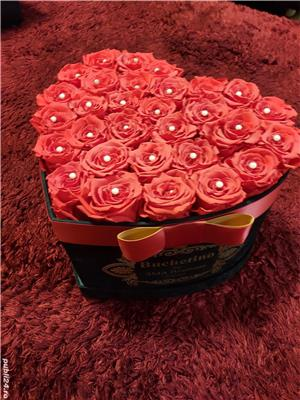 Inima trandafiri criogenati - imagine 1
