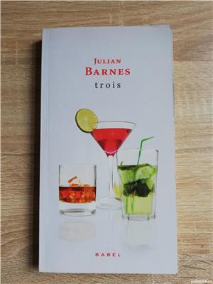 Cărți Julian Barnes (Niveluri de viață, Trois, Sentimentul unui sfârșit, Porcul Spinos) de la 10 lei - imagine 2