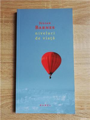 Cărți Julian Barnes (Niveluri de viață, Trois, Sentimentul unui sfârșit, Porcul Spinos) de la 10 lei - imagine 5