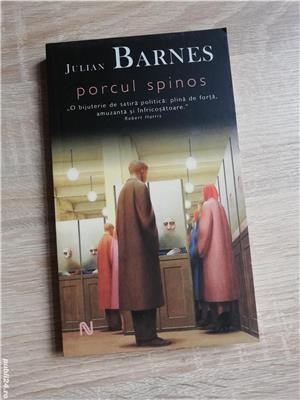 Cărți Julian Barnes (Niveluri de viață, Trois, Sentimentul unui sfârșit, Porcul Spinos) de la 10 lei - imagine 3
