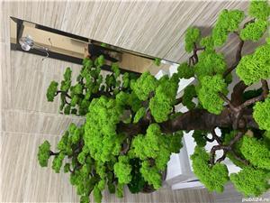 Bonsai cu licheni naturali ! - imagine 2