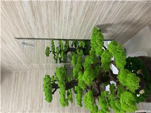 Bonsai cu licheni naturali ! - imagine 7