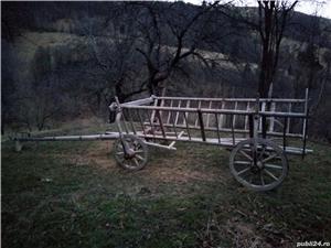 Car taranesc pentru vite - imagine 4