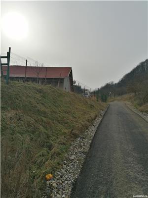 Vând teren Lesnic - imagine 2