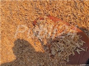 Lemne de Foc Depozit Caru Cu Lemne din Trivalea Mosteni  | Facebook Caru Cu Lemne - imagine 5