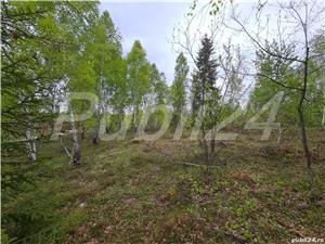 De vanzare teren de cabana in sat vacanta Calatele Padure - imagine 4