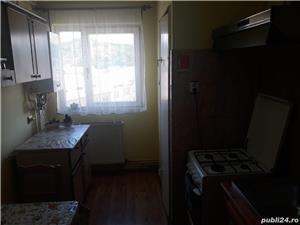 Cazare apartament Ocna Sibiului - imagine 4
