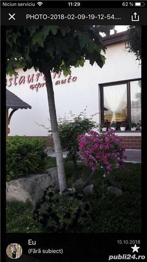 Restaurant Urvind  - imagine 4