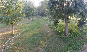 Casă de vânzare în Jud Sibiu (Apoldu de Sus) - imagine 2